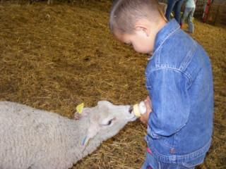 Visites de fermes et producteurs locaux