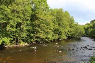 Réouverture de la pêche en rivière