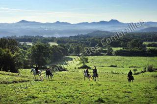 auvergne randonnées équitation chaîne des puys