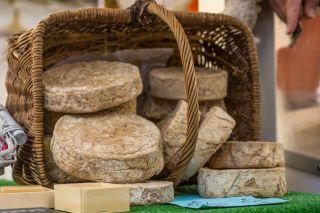 fromages-elays-saens-otc-bd-249