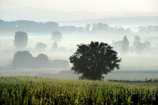 paysages-des-combrailles-j-damase-1-155