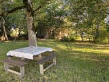 Jardin avec table de pique-nique